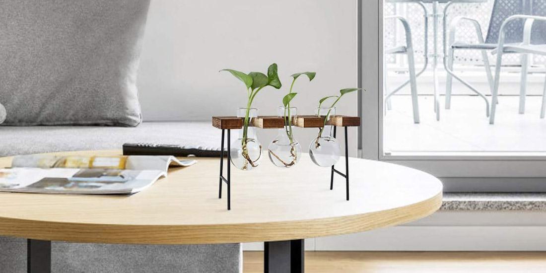 Air Plant Terrarium Glass Vase with Retro Wooden Mini Bench Stand